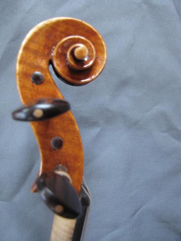 "violon ""Jacana"" tête"
