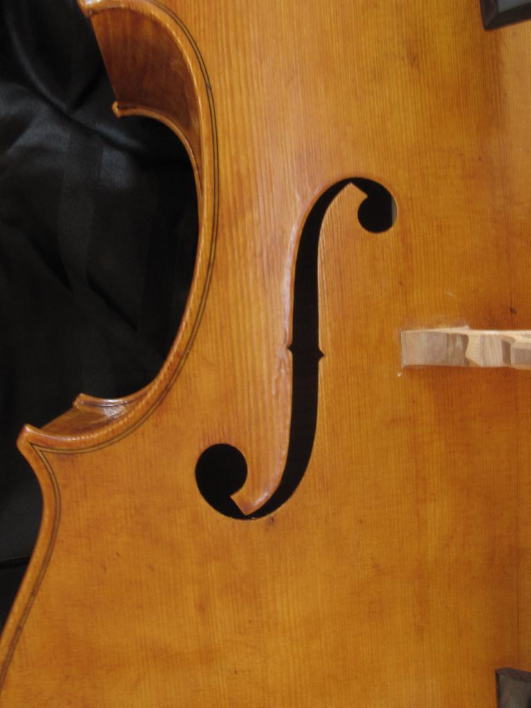 violoncelle Paradisiaea Raggia ( FF) vendu à Pau