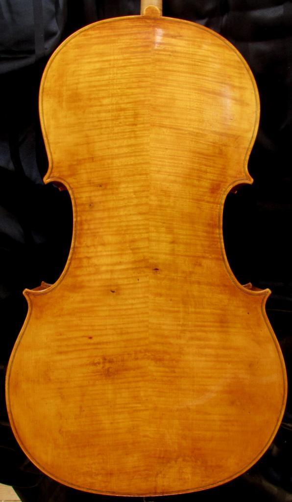 violoncelle Paradisiaea Raggia (dos) vendu à Pau