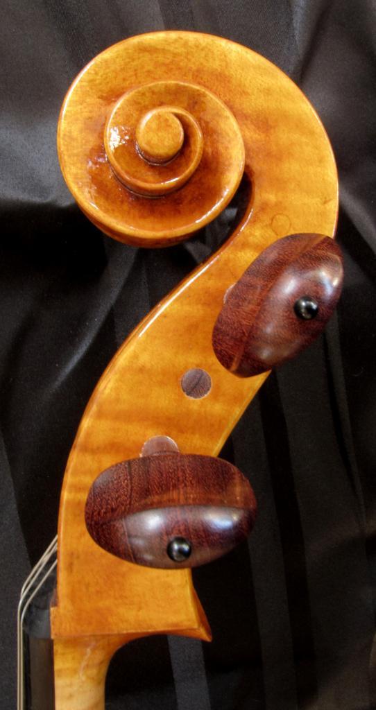 violoncelle Paradisiaea Raggia (tête) vendu à Pau